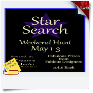 SLHunts-Star Search Hunt Poster_zps8sf7fbo8
