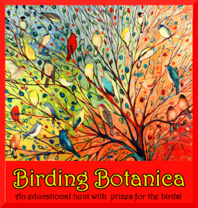 birding-botanica